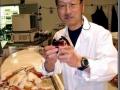 Dr. Tsunemi Kubodera