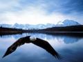 bald-eagle-and-american-flag-pics