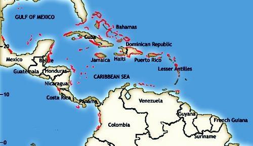 Oceans Enterprises Marine Life