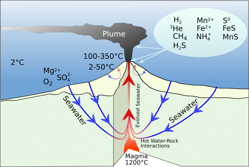 an analysis of the hydrothermal vents in the ocean floor Process where molten material adds new oceanic crust to the ocean floor crust earth's outermost layer on land and under water  from hydrothermal vents.