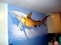 Golden Hammerhead Shark