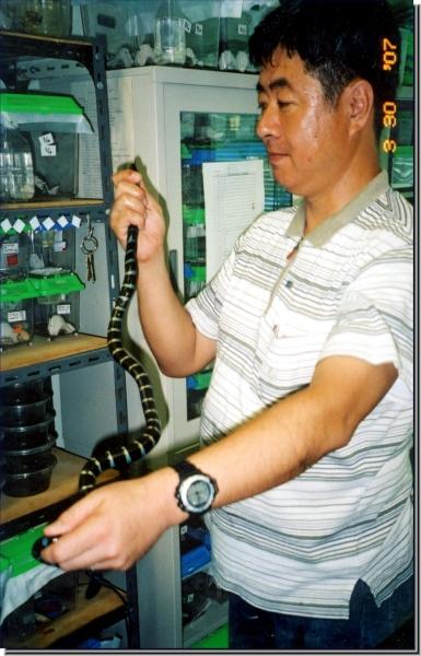 Dr. Fukai Ota