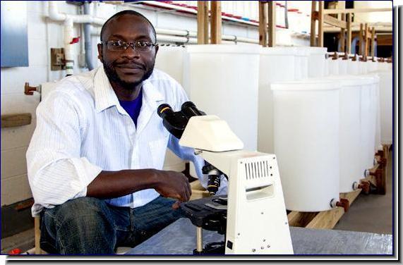 Dr. Anu Frank-Lawale