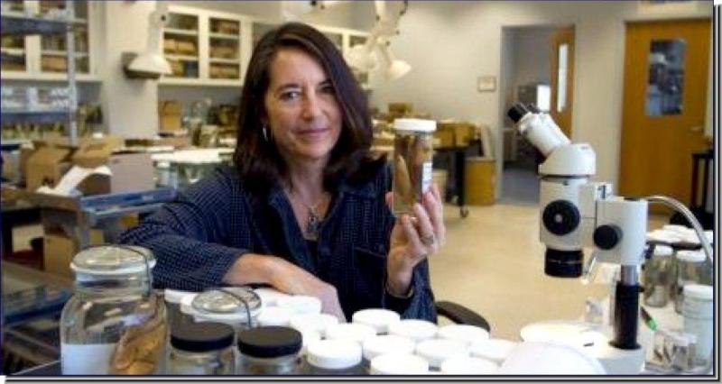 Dr. Carole C. Baldwin