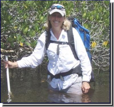 Dr. Janet E. Nestlerode