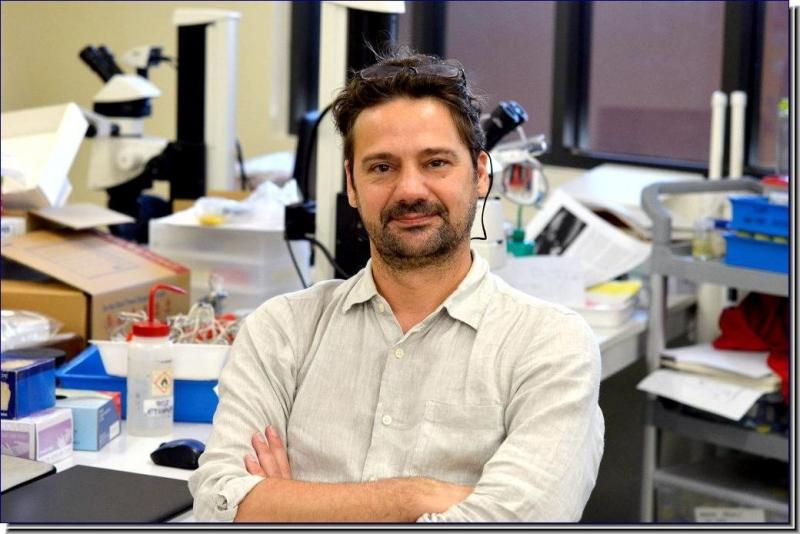 Dr. Stefano A. Cannicci