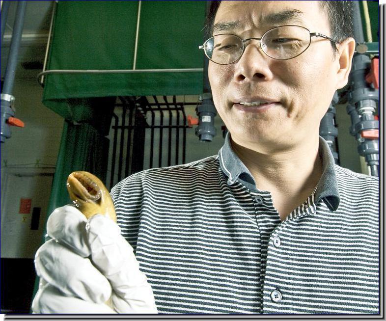 Dr. Weiming Li