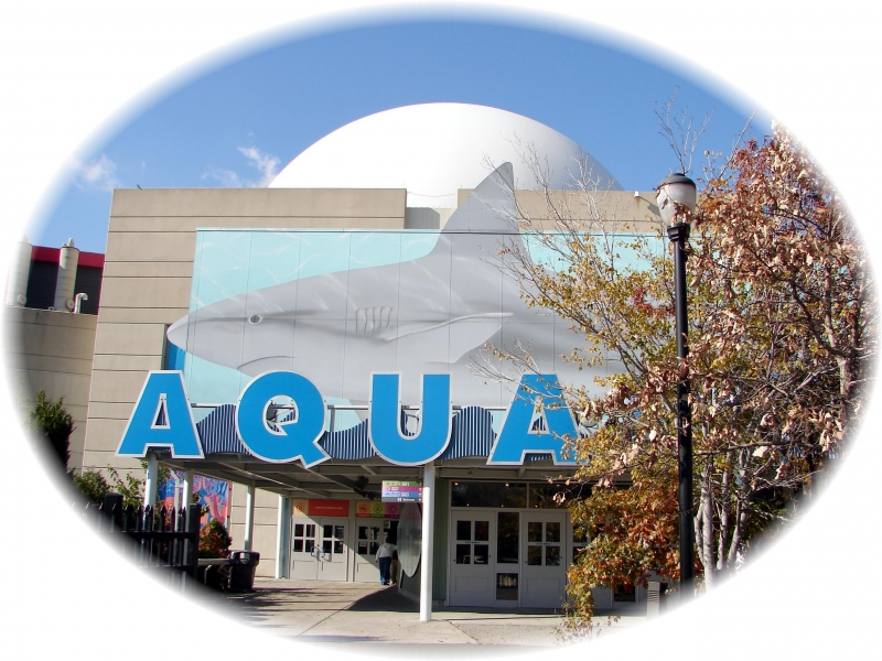 New Jersey State Aquarium