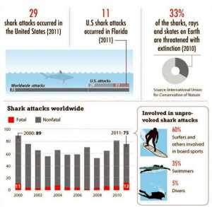 facts-about-sharks-shark-attack-facts1