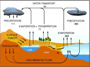 water_cycle_web